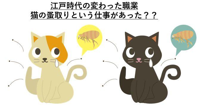 江戸時代の変わった職業:猫の蚤取り